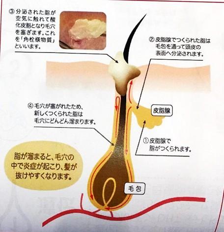 出典:http://kiyoshitakizawa.com/