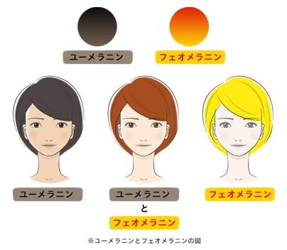 出典:http://www.kose.co.jp/shirosumi/bihaku/