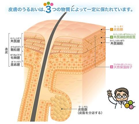 出典:https://www.maruho.co.jp/sp/