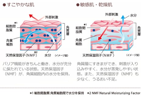 出典:https://www.daiichisankyo-hc.co.jp/site_minon/