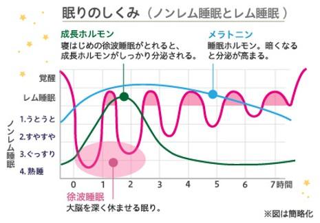 出典:https://www.sofy.jp/ja/home.html