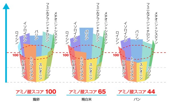 出典:https://www.jpnsport.go.jp/