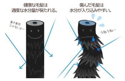 出典:https://www.kango-roo.com/