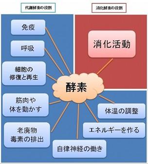 出典:http://www.kibakofuro.com/