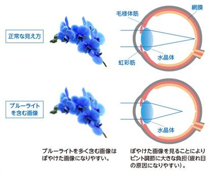 出典:https://takeda-kenko.jp/yakuhou/