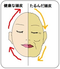 出典:http://www.dr-touhi.com/