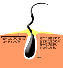 出典:http://alowa.co.jp/