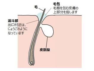 出典:https://eijingukea.nahls.co.jp/