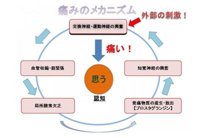 出典:https://ameblo.jp/naoki-osugi/