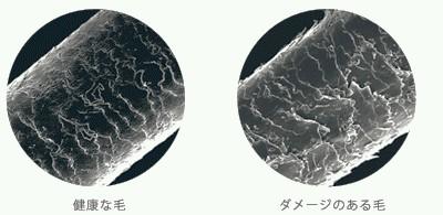出典:http://stylearoma.co.jp/