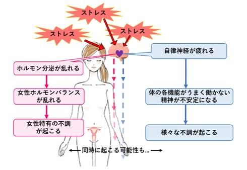 出典:http://bloomgarden-aroma.blog.jp/