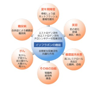 出典:https://www.fujicco.co.jp/know_enjoy/health/isoflavone/section1/03.html