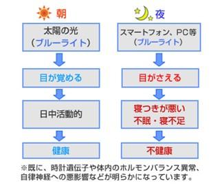 出典:http://kenkyu.wakasa.jp/
