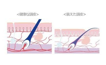 出典:https://ameblo.jp/amagasaki-spa1005/