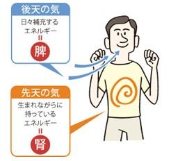 出典:https://www.yomeishu.co.jp/