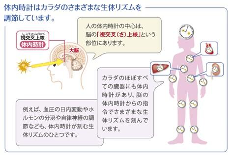 出典:https://www.takeda.com/ja-jp/